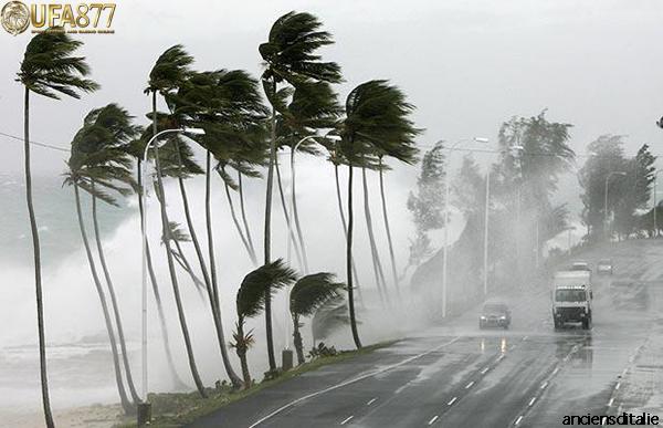 พายุหมุนเขตร้อน